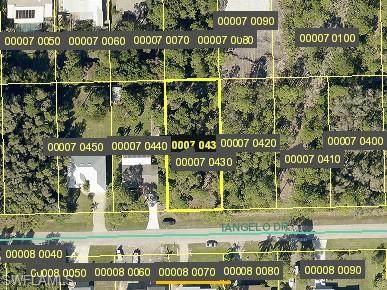 3710 Tangelo Drive, Other, FL 33956 (MLS #221005309) :: Clausen Properties, Inc.