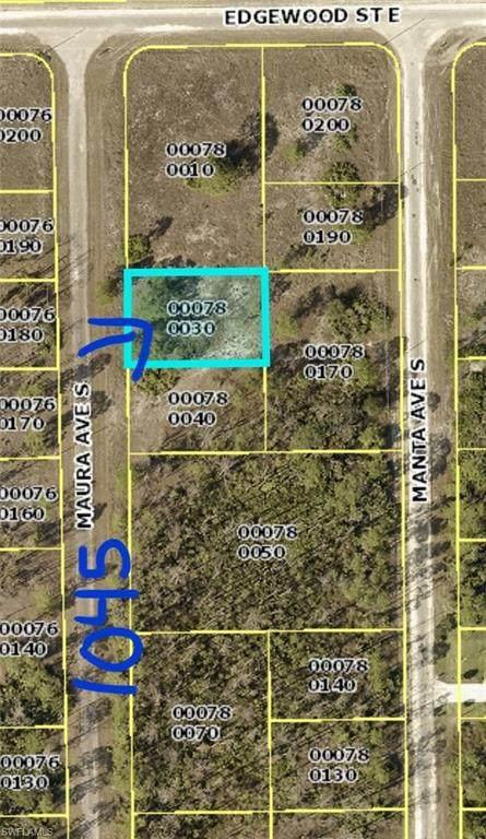 1045 Maura Avenue S, Lehigh Acres, FL 33974 (#221005702) :: Vincent Napoleon Luxury Real Estate