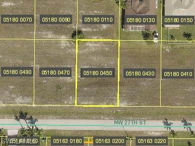 4333 NW 27th Street, Cape Coral, FL 33993 (MLS #221005749) :: Kris Asquith's Diamond Coastal Group