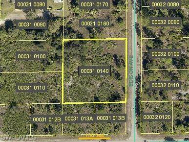 1403 Edison Avenue, Lehigh Acres, FL 33972 (#221006499) :: Southwest Florida R.E. Group Inc