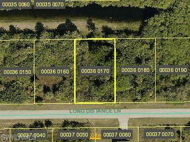 749 Long Distance Lane, Lehigh Acres, FL 33974 (#221006960) :: Southwest Florida R.E. Group Inc