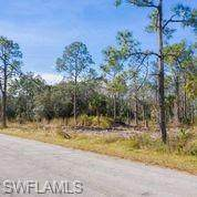 2117 Johns Avenue, Alva, FL 33920 (MLS #221008156) :: BonitaFLProperties