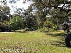 2391 Lippincott Road, Alva, FL 33920 (MLS #221010019) :: Domain Realty