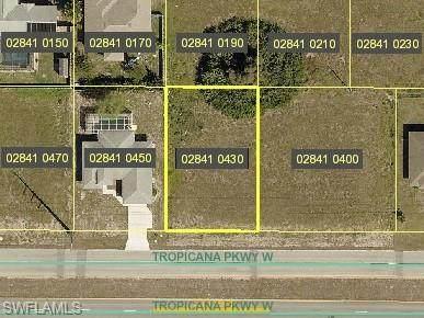 1023 Tropicana Parkway - Photo 1