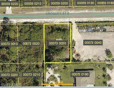 1110 Croquet Street E, Lehigh Acres, FL 33974 (#221011855) :: The Michelle Thomas Team