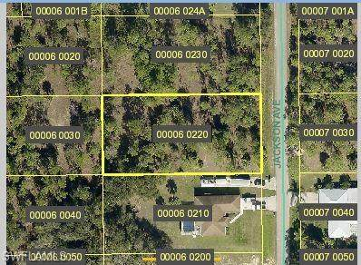 1221 Jackson Avenue, Lehigh Acres, FL 33972 (MLS #221011871) :: NextHome Advisors