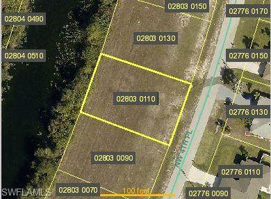 2920 NW 4th Place, Cape Coral, FL 33993 (#221013073) :: The Dellatorè Real Estate Group