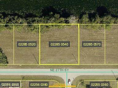 1935 NE 27th Street, Cape Coral, FL 33909 (MLS #221014399) :: Realty Group Of Southwest Florida