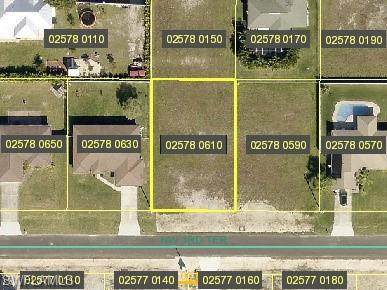 509 NW 3rd Terrace, Cape Coral, FL 33993 (MLS #221014514) :: Kris Asquith's Diamond Coastal Group