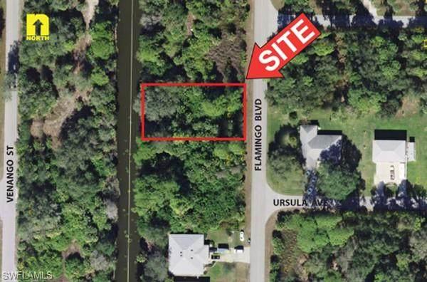 441 Flamingo Boulevard, Port Charlotte, FL 33954 (MLS #221014974) :: Domain Realty