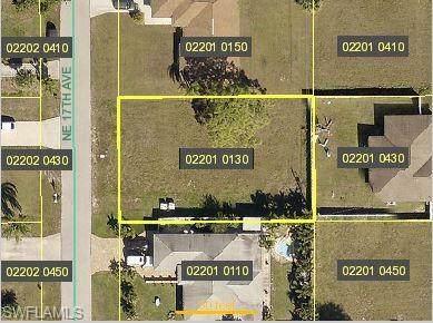 1825 NE 17th Avenue, Cape Coral, FL 33909 (MLS #221015808) :: Premier Home Experts