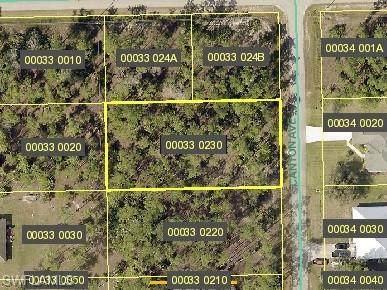 2221 Canton Avenue, Alva, FL 33920 (#221016057) :: The Dellatorè Real Estate Group