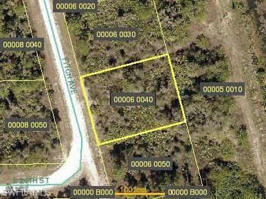 2602 Fitch Avenue, Alva, FL 33920 (#221016926) :: The Dellatorè Real Estate Group