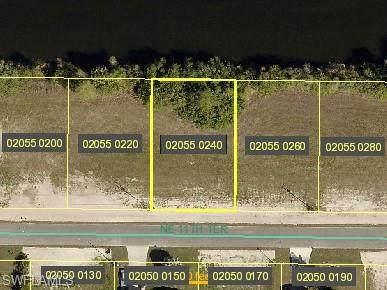 913 NE 11th Terrace, Cape Coral, FL 33909 (MLS #221017012) :: Domain Realty