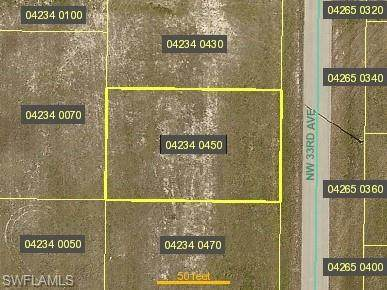 1212 NW 33rd Avenue, Cape Coral, FL 33993 (MLS #221017179) :: Domain Realty