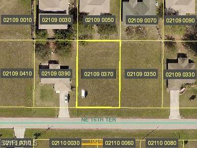 827 NE 16th Terrace, Cape Coral, FL 33909 (MLS #221017196) :: Domain Realty