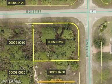 2025 Polar Avenue, Alva, FL 33920 (#221017424) :: The Dellatorè Real Estate Group