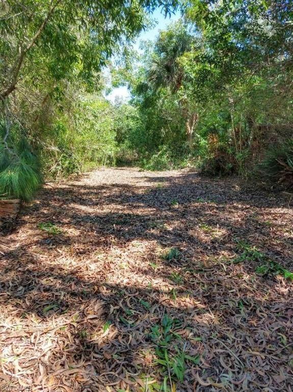 7431 Georgiana Drive, Bokeelia, FL 33922 (MLS #221021436) :: Waterfront Realty Group, INC.