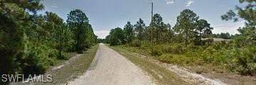 625 Franklin Avenue S, Lehigh Acres, FL 33974 (#221026596) :: Caine Luxury Team
