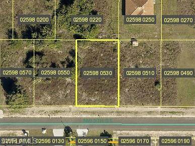 429 NW 5th Street, Cape Coral, FL 33993 (MLS #221026713) :: Premiere Plus Realty Co.