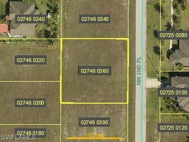 2236 NW 2nd Place, Cape Coral, FL 33993 (MLS #221026767) :: Premiere Plus Realty Co.