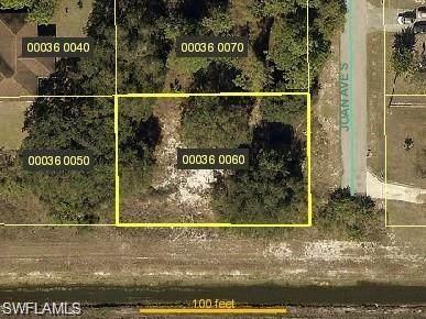 4608 Joan Avenue N, Lehigh Acres, FL 33971 (#221027062) :: Jason Schiering, PA