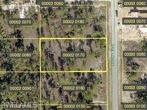 1211 Leroy Avenue, Lehigh Acres, FL 33972 (#221028560) :: Southwest Florida R.E. Group Inc