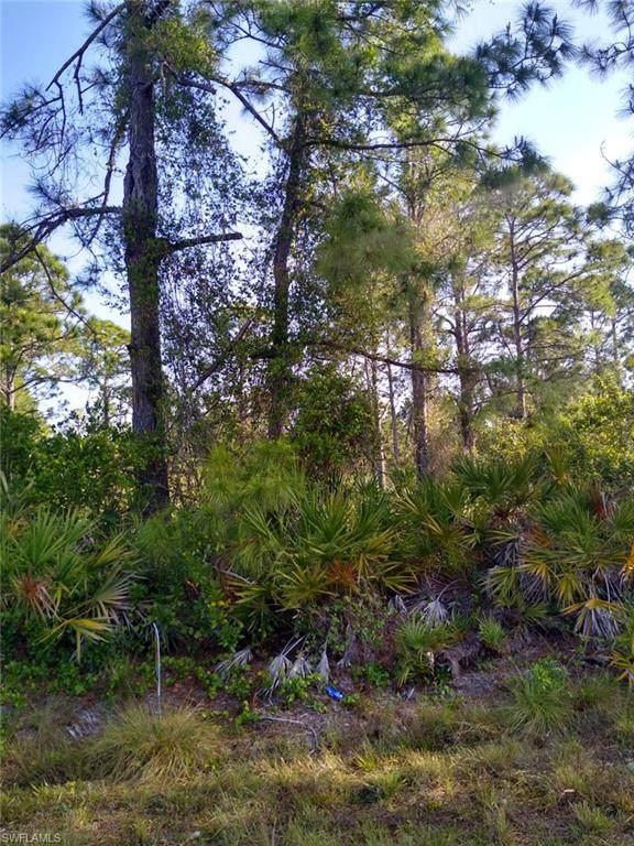 27462 Corinthian Drive, Punta Gorda, FL 33955 (MLS #221028904) :: Premiere Plus Realty Co.