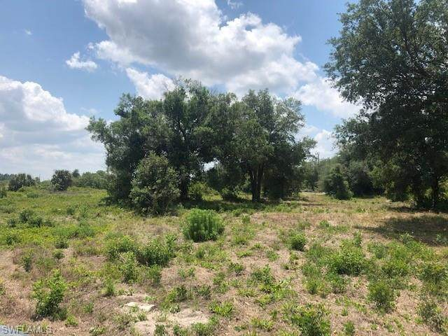 7860 17th Terrace, Labelle, FL 33935 (MLS #221029288) :: Clausen Properties, Inc.