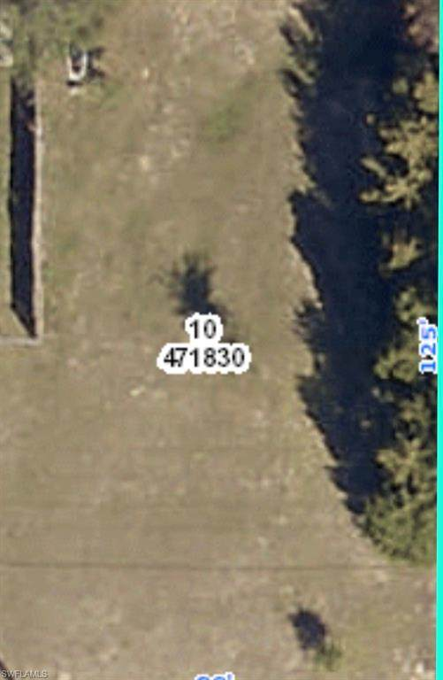 5453 County Line Road, Spring Hill, FL 34606 (MLS #221030253) :: Waterfront Realty Group, INC.