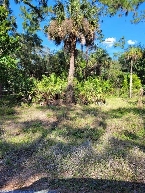 1111 Wood Drive, FORT DENAUD, FL 33935 (MLS #221031130) :: Premiere Plus Realty Co.
