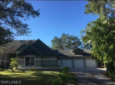 10640 Deal Road, North Fort Myers, FL 33917 (MLS #221032357) :: Premiere Plus Realty Co.