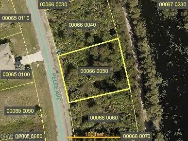 609 Pelee Avenue, Lehigh Acres, FL 33974 (MLS #221033517) :: Wentworth Realty Group