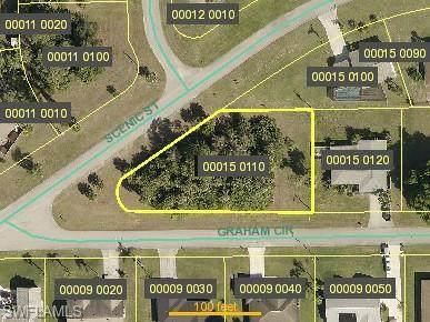 1406 Scenic Street, Lehigh Acres, FL 33936 (MLS #221034132) :: Clausen Properties, Inc.