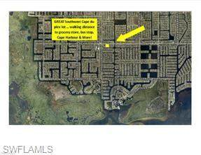 1513 SW 48th Terrace, Cape Coral, FL 33914 (MLS #221035588) :: #1 Real Estate Services