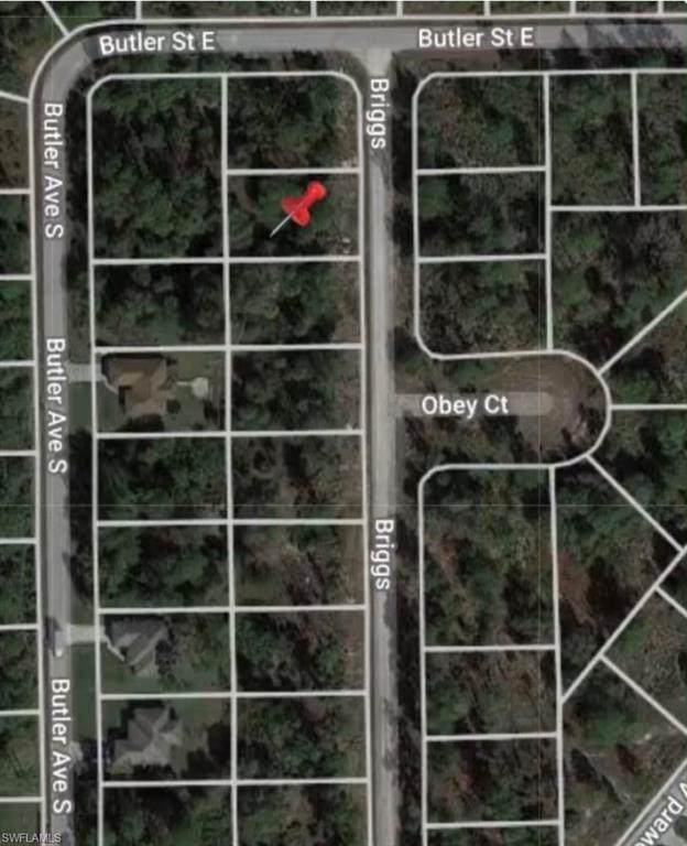 304 Briggs Avenue S, Lehigh Acres, FL 33974 (MLS #221045197) :: The Naples Beach And Homes Team/MVP Realty