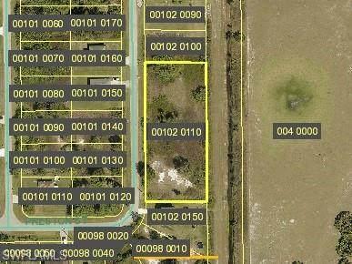 429 Progress Avenue, Lehigh Acres, FL 33974 (#221045209) :: The Dellatorè Real Estate Group
