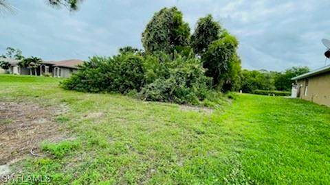 4117 NE 23rd Place, Cape Coral, FL 33909 (MLS #221045724) :: Domain Realty