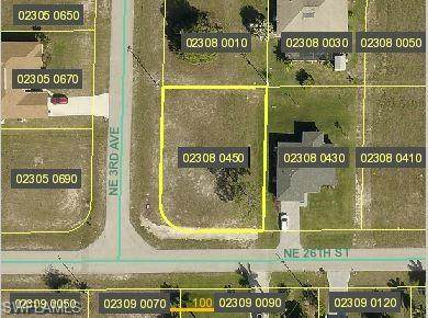 305 NE 26th Street, Cape Coral, FL 33909 (MLS #221046670) :: Coastal Luxe Group Brokered by EXP