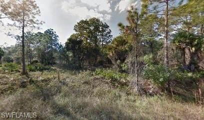 1303 Truman Avenue, Lehigh Acres, FL 33972 (MLS #221051898) :: Team Swanbeck