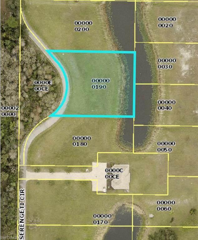 17190 Serengeti Circle, Alva, FL 33920 (MLS #221053647) :: Florida Homestar Team