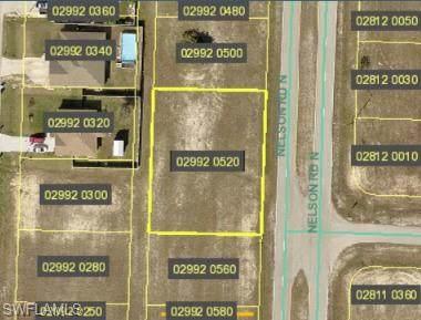 3000 Nelson Road N, Cape Coral, FL 33993 (MLS #221053777) :: Clausen Properties, Inc.