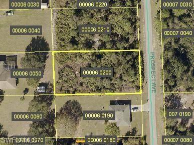 415 Prospect Avenue, Lehigh Acres, FL 33972 (MLS #221054486) :: Team Swanbeck
