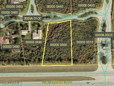 22936 Dayflower Lane, Alva, FL 33920 (MLS #221054891) :: Crimaldi and Associates, LLC