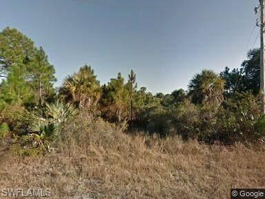 313 Selkirk Avenue, Lehigh Acres, FL 33974 (MLS #221055567) :: Crimaldi and Associates, LLC