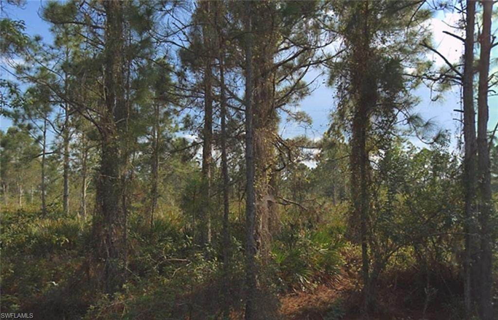 12129 Everglades Avenue - Photo 1