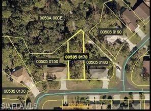11166 Coimbra Lane, Bonita Springs, FL 34135 (MLS #221059362) :: Clausen Properties, Inc.