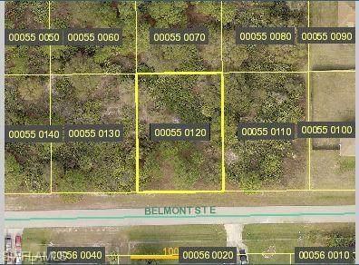 1043 Belmont Street E, Lehigh Acres, FL 33974 (MLS #221066691) :: Avantgarde