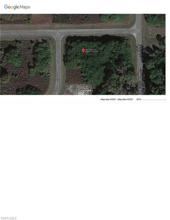 3001 Mignon Circle, Labelle, FL 33935 (#221067443) :: The Michelle Thomas Team