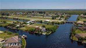 1253 NW 39th Avenue, Cape Coral, FL 33993 (MLS #221067914) :: Realty World J. Pavich Real Estate